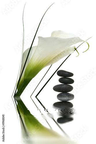 Leinwandbild Motiv Arum et galets avec reflets