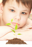 The boy observes cultivation of a young plant. poster