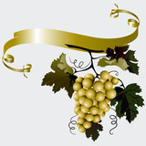 Fototapety Grapes With Leaves And Ribbon