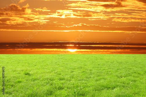 Obraz na Plexi prato e cielo