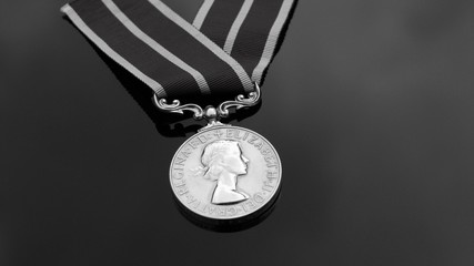 Army service medal