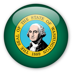 Washington State flag button