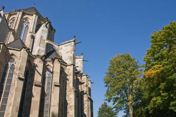 Altenberger Dom im Herbst