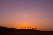 Fototapeten,karawane,wüste,silhouette,silhouette
