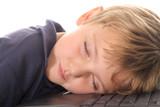little boy asleep at the computer poster