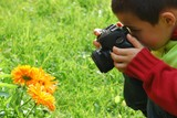 Young boy on a photo job shooting orange flowers - 10017804