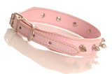 pink leather dog collar with metal studs poster