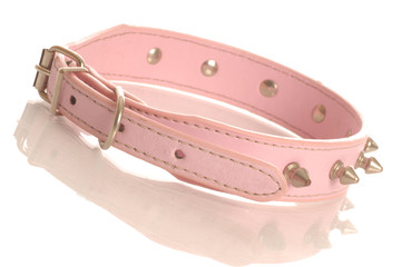 pink leather dog collar with metal studs