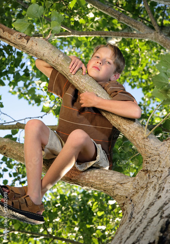 unhappy boy sitting in tree
