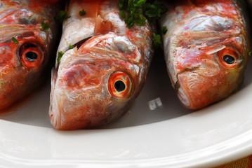 Triglie in rosso - Secondi di pesce - Ricetta della Toscana
