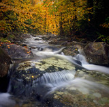 Autumn brook flowing in New Hampshire