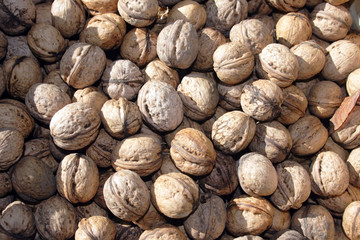 lot of nuts as background