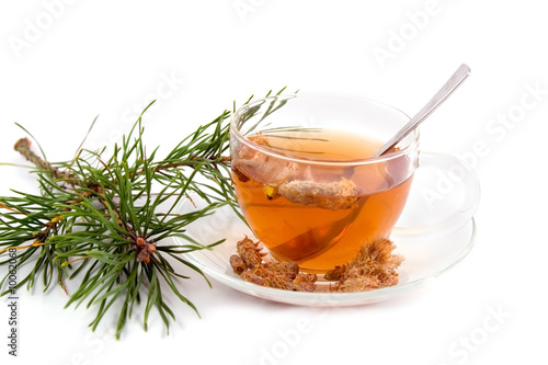 medicinal decoction with pine buds isolaited on white - 10062068