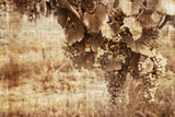 Grunge grapes in the warm tones reminds old ways of vendage poster