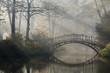 Leinwanddruck Bild - Old bridge in misty autumn park