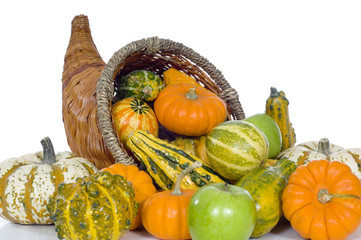 A harvest, autumn or thankgiving conucopian