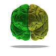 dramatical render of a human brain in green with clipping path