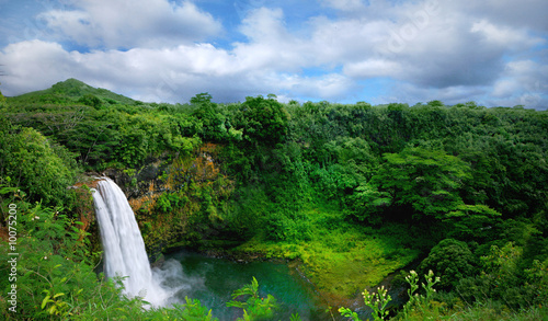 Staande foto Weide, Moeras Lush Green Landscape Waterfall on the Hawaiian Islands