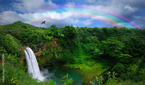 canvas print picture Waterfall in Kauai With Rainbow and Bird Overhead