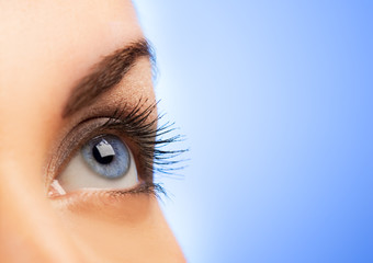 Human eye on blue background (shallow DoF)