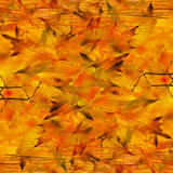 autumn background with some integrated oak leaves poster
