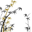 roleta: Silhouette of branches of a bamboo on a white background