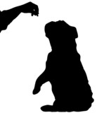 silhouette of english bulldog sitting up begging for a treat poster