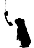 dog sitting up begging with phone dangling down beside poster