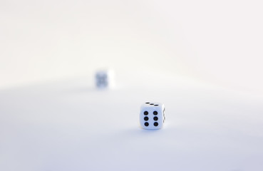 Two dices on white surface
