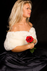 Portrait of the beautiful girl with white boa holding a rose.
