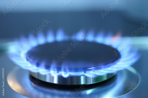 Gas burner flame - 10110020