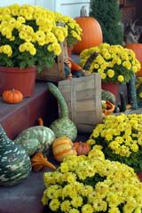 Fall of plenty