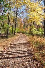 Catskills in Fall