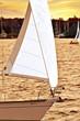 Sailboat with white sail sailing at sunset