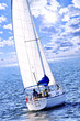 Sailboat with white sail sailing on a sunny day