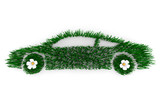 Fuel Efficient Car - Grass poster