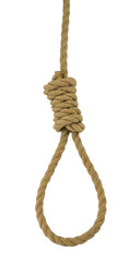 Hanging noose of rope isolated on white.