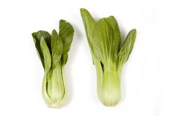 Bok Choi isolated on a white studio background.