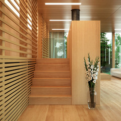 Modern wood panelled home