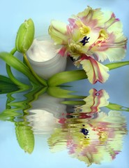 facial spa cream with flowers