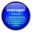 """Manager"" definition button"