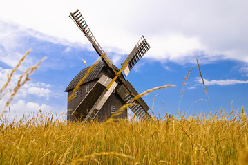 The old windmill costs in the field of mature grain