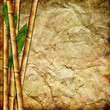 vintage bamboo paper