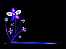 Flower noc