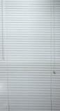 full image of full length closed mini blinds poster