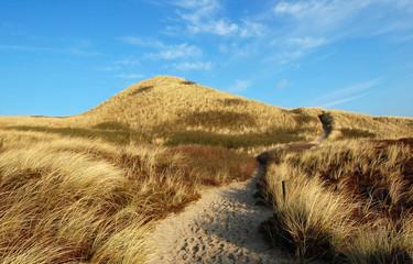 dune on the island sylt
