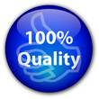 """100% Quality"" Button"