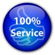 """100% Service"" Button"