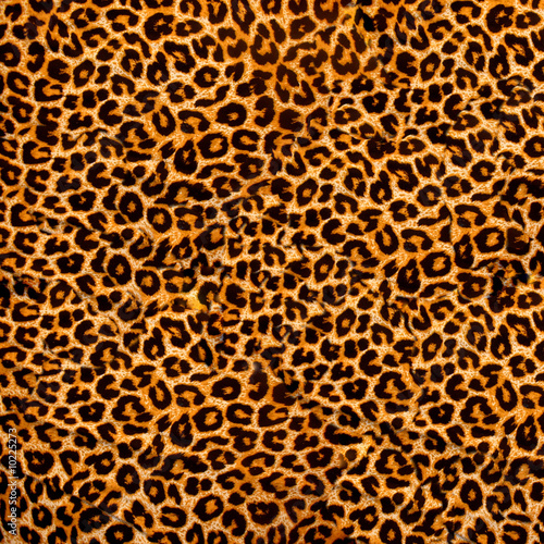 decorative leopard texture