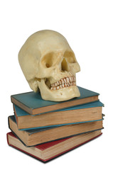 Human Skull on a stack of old books isolated over white